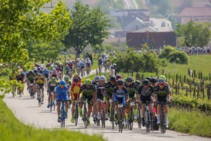 Neusiedler See Radmarathon (Foto:Sportshot.de / Neusiedler See Radmarathon)